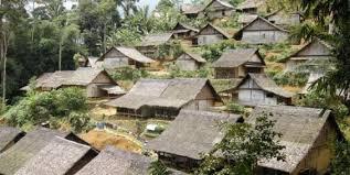 Perkampungan suku Baduy.