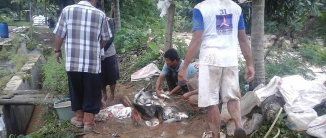peternak ikan longsor cibunian