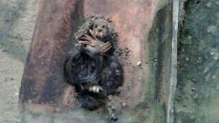 Sosok jenglot yang ditemukan di atap warga Cibinong, Kamis 18/2 (dok. KM)
