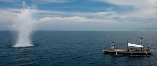 Selain merusak ekosistem, bom ikan juga kerap kali melukai atau bahkan membunuh nelayan atau perenang di laut (stock)