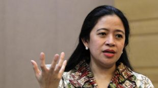 Menteri Koordinator Bidang Pembangunan Manusia dan Kebudayaan, Puan Maharani (dok. Edunews.id)