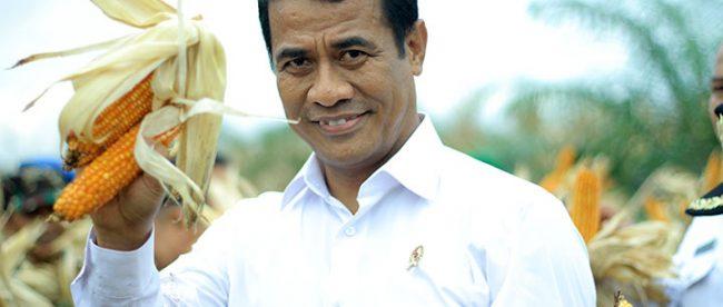 Menteri Pertanian Amran Sulaiman (dok. Media Indonesia)