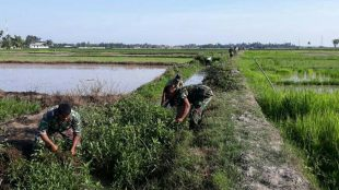 Babinsa dari jajaran Koramil Langsa Timur membersihkan saluran irigasi, Selasa 14/8 (dok. KM)