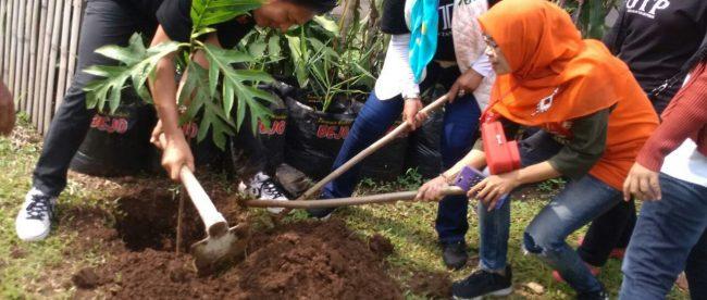 Giat Tanam Pohon GTP dan KWT Rose Mekar di Kelurahan Loji, Kota Bogor, Minggu 4/11/2018 (dok. KM)