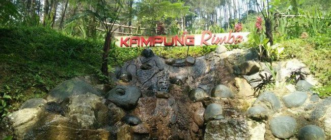 Wisata alam Kampung Rimba di wilayah Cisarua, Kabupaten Bogor (stock)