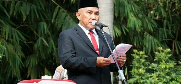 Walikota Depok Mohammad Idris saat memimpin upacara peringatan Hari Pahlawan Ke-73 di TMP Kalimulya, Sabtu 10/11/2018 (Foto: Istimewa)