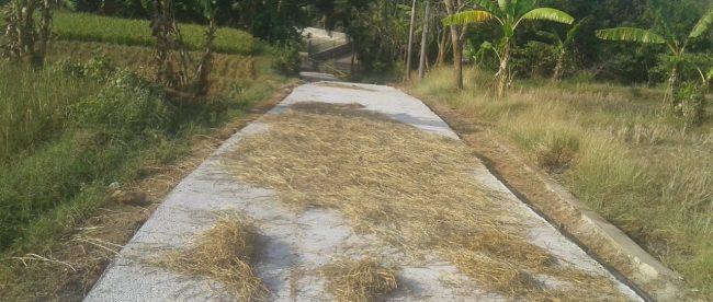 Pekerjaan cor jalan di RT 01/01 Desa Caracas, Kecamatan Kalijati, Subang (dok. KM)