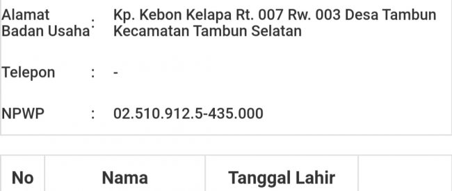 Data badan usaha milik CV Ratur Internusa Abadiyang tercatat di LPSE Kota Bekasi (dok. KM)