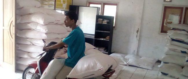 Petani mengambil pupuk di Kantor Desa Kosambi, Kecamatan Cipunagara, Subang (dok. KM)