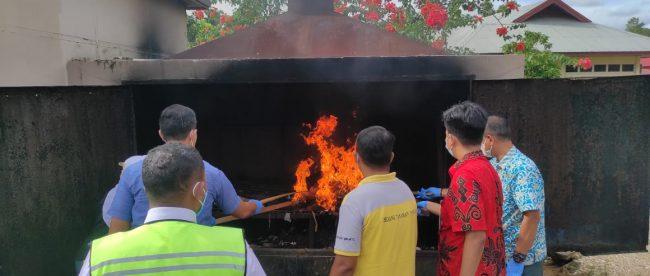 Pemusnahan media pembawa penyakit oleh Pejabat Karantina Pertanian Merauke (dok. KM)