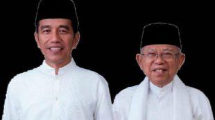 Presiden Joko Widodo dan Wakil Presiden Ma'ruf Amin (stock)